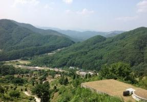 팔당공원묘지 by 해담장묘산업