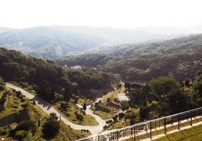 판교공원묘지 by 해담장묘산업