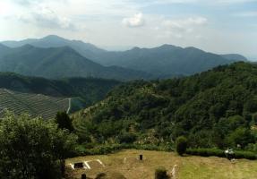 양평공원묘지 by 해담장묘산업