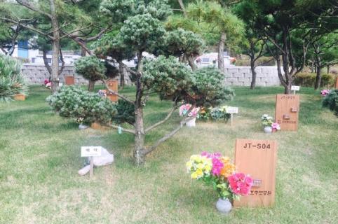 수목장 by 해담장묘산업